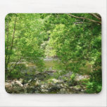 Patapsco River View Maryland Nature Photography Mouse Pad
