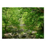 Patapsco River View Maryland Nature Photography Poster