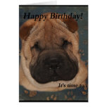 Patas de la Cumpleaños-Toma de Shar Pei Felicitación
