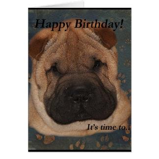 Patas de la Cumpleaños-Toma de Shar Pei Tarjeta De Felicitación