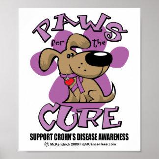 Patas de la enfermedad de Crohn para la curación Poster