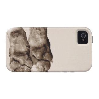 Patas de los perros iPhone 4/4S funda
