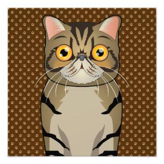 Patas exóticas del dibujo animado del gato de Shor Arte Con Fotos