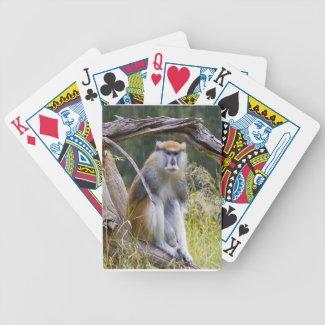 Patas Monkey Bicycle Poker Deck