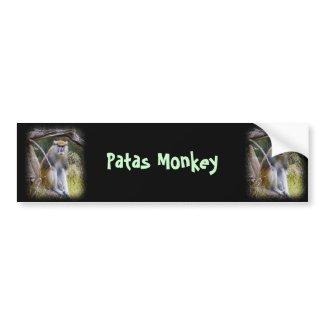 Patas Monkey Bumper Sticker