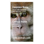 Patas Monkey Business Cards