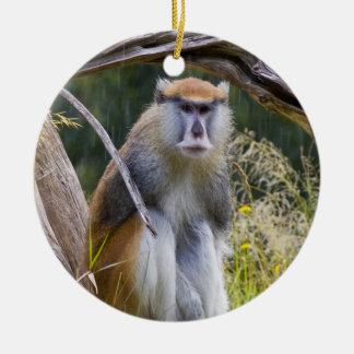 Patas Monkey Ceramic Ornament