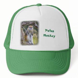 Patas Monkey Mesh Hat