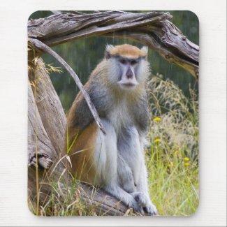 Patas Monkey Mousepad