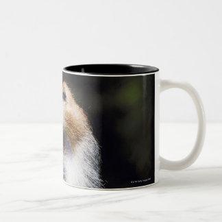 Patas monkey Two-Tone coffee mug