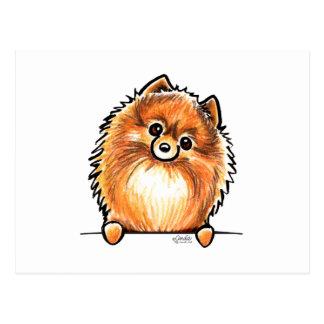 Patas rojas de Pomeranian para arriba Tarjeta Postal
