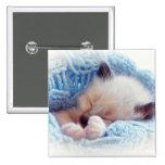 Patas siamesas del gatito el dormir pin