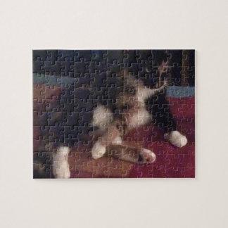 Patas suaves del gatito puzzle con fotos