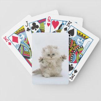 Patas y naipes del gato del gatito de las garras baraja de cartas