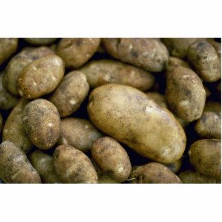Patatas deliciosas fotoescultura vertical
