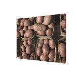 Patatas en el mercado de un granjero de New Jersey Lona Envuelta Para Galerías