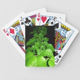 patay baraja cartas de poker