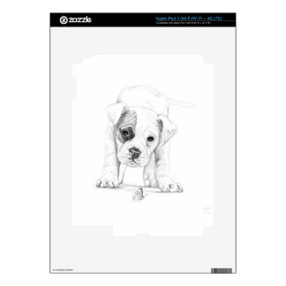 Patch A Boxer Puppy Drawing Art Decals For iPad 3