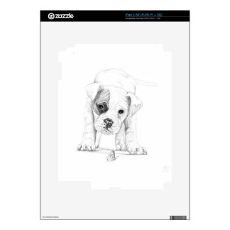 Patch A Boxer Puppy Drawing Art iPad 2 Skin