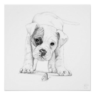 Patch A Boxer Puppy Drawing Art Poster