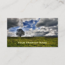 Patch of Blue Sky Custom Business Cards
