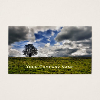 Patch of Blue Sky Custom Business Cards