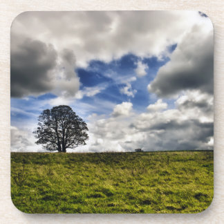 Patch of Blue Sky HDR Coasters