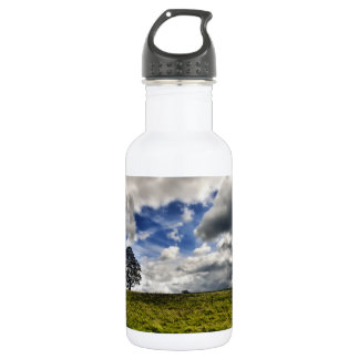 Patch of Blue Sky HDR 18oz Water Bottle