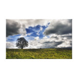 Patch of Blue Sky HDR Stretched Canvas Prints