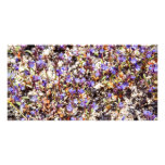 Patch of Flowers Photo Card Template
