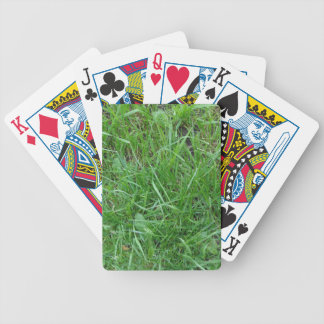 Patch of Grass Bicycle Playing Cards