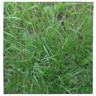 Patch of Grass Cloth Napkin