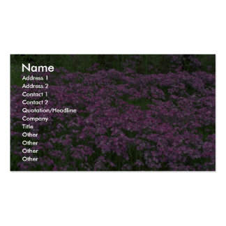 Patch of wild vorbenia in East Texas Double-Sided Standard Business Cards (Pack Of 100)