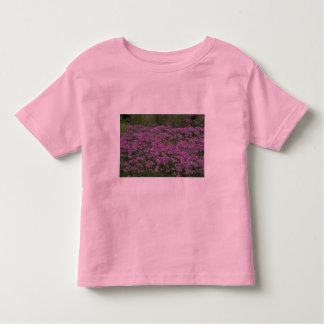 Patch of wild vorbenia in East Texas T Shirts