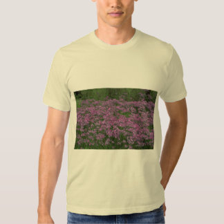Patch of wild vorbenia in East Texas Tee Shirt