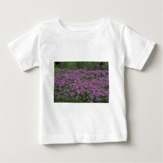 Patch of wild vorbenia in East Texas Tee Shirts