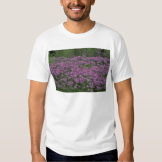 Patch of wild vorbenia in East Texas Tshirts