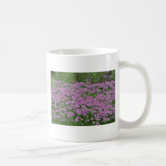 Patch of wild vorbenia in East Texas Yellow flower Classic White Coffee Mug