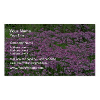 Patch of wild vorbenia in East Texas Yellow flower Double-Sided Standard Business Cards (Pack Of 100)