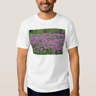 Patch of wild vorbenia in East Texas Yellow flower Tshirt