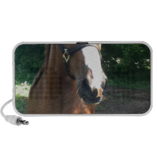 Patch the Horse Collection PC Speakers