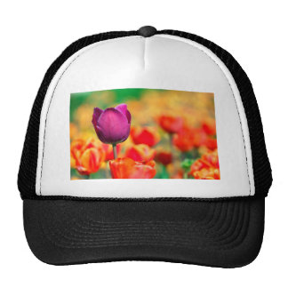 Patch with tulips mesh hats