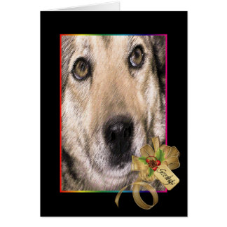 Patches, Dog of Christmas Past Greeting Card