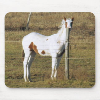 Patches Peeking by Leslie Peppers Mouse Pad