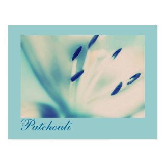 Patchouli Lily Postcard Floral Digital Art
