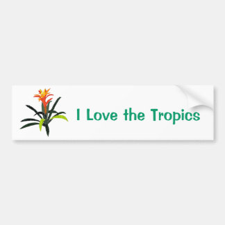 Patchwork Tropical Bromeliad Bumper Sticker