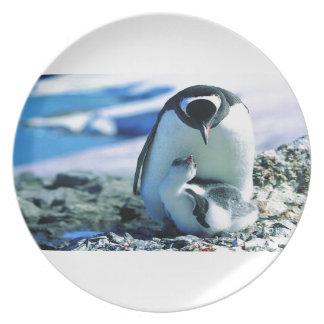 Paternidad del pingüino platos para fiestas