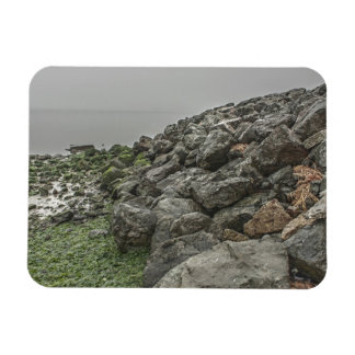 Path by the Bay 2 Rectangular Magnet