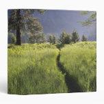 Path in meadow, Yosemite National Park Binder