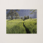 Path in meadow, Yosemite National Park Jigsaw Puzzle